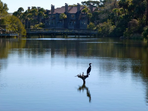 One of Kiawah Island's many lagoons