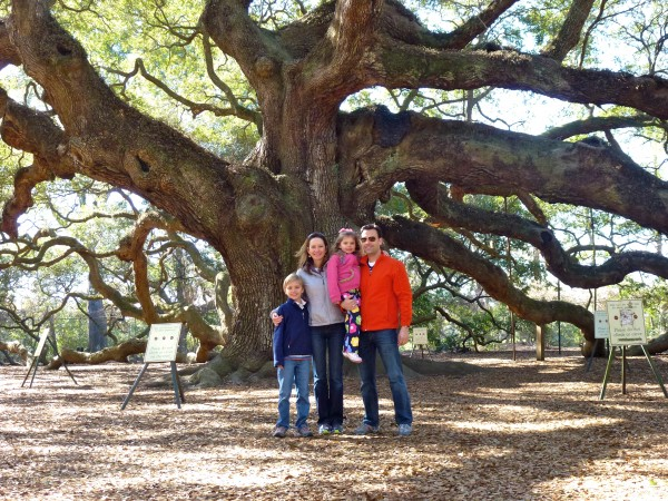 Visiting the Angel Oak on route to Charleston