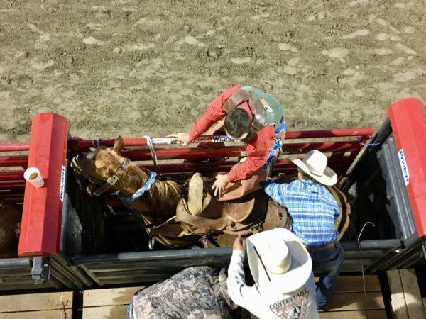 VIP Seats at the Jackson Hole Rodeo