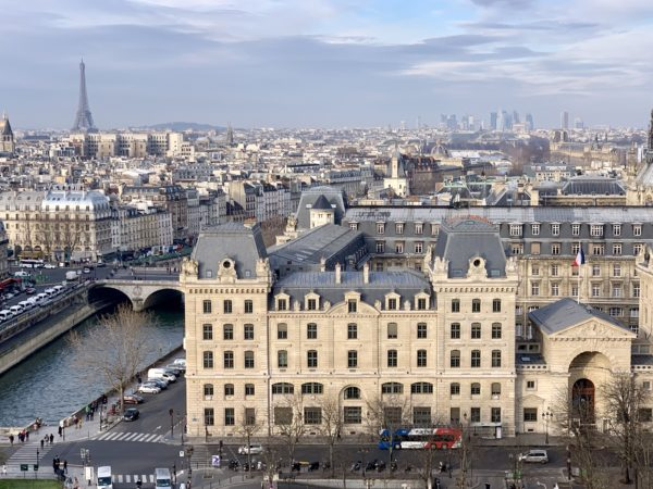 View of Paris from the top of Notre Dame