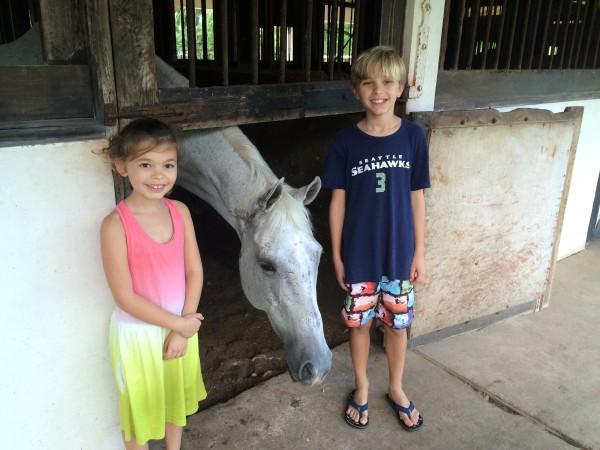 Half Moon equestrian center
